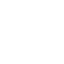 Time Square Block Party